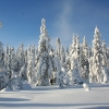 Kittilä, Lapland (Imagebank of Finland's environmental administration / Esa Nikunen 2007)