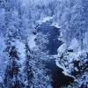Kuusamo, Northern Ostobothnia (Imagebank of Finland's environmental administration / Tapio Heikkilä 2001)