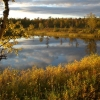 Evening in the Basevuovdi area in September.  Proposed enlargement of Øvre Anarjohka national park.  (Photo: Rein Midteng)