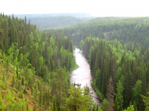 Dvina-Pinega Watershed (Photo: Artem Stolpovsky)