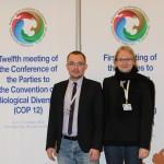 Денис Добрынин из отделения WWF-России в Баренц-регионе и Анна Кухмонен из Института окружающей среды Финляндии представили опыт охраны природы в Баренц-регионе в 12-ой Конференции сторон Конвенции о биологическом разнообразии.